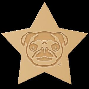 logo_positiv_stern